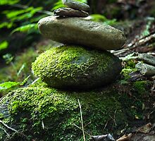 Balancing Rocks by Susan R. Wacker