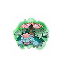 Venusaur by warriorhel3