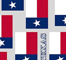 Smartphone Case - State Flag of Texas VIII by Mark Podger