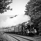 The Welsh Marches Express by Steve  Liptrot