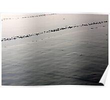 Damp Beach Poster