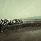 Maryport Pier by Lou Wilson