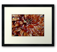 Mum's The Word: The Word is Russet Framed Print