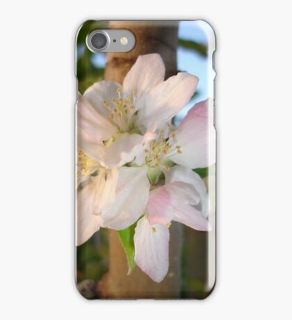 Beautiful Apple Blossom Cluster iPhone Case/Skin