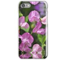 Lathyrus Odoratus In Pastel Pink iPhone Case/Skin