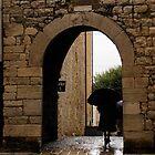 Rainy Day in Provence, France by Georgia Mizuleva