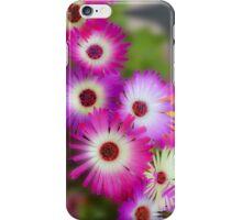 Mesembryanthemums in Neon iPhone Case/Skin