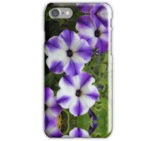 Decorative Petunia in Purple and White iPhone Case/Skin