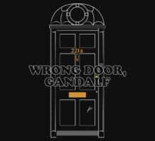 Wrong Door, Gandalf by huckblade