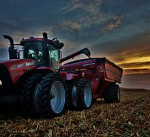 Sunset Corn Harvest by Studio601