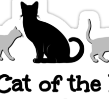Black Cat of the Family Sticker