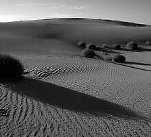 Mungo dunes by Petecullin22