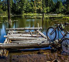 Mountain Biking can take you anywhere! by Joe Blount
