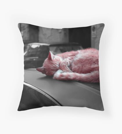 Real life Bagpuss Throw Pillow