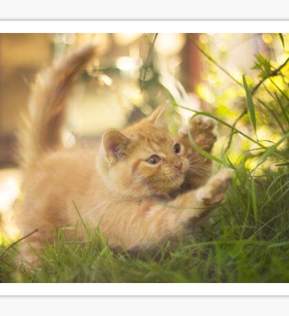 Garfield Sticker