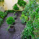 Bath Patio Garden by Sue Ballyn