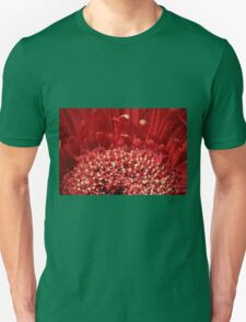 Polin Party T-Shirt
