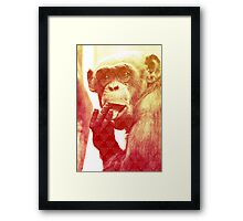 Licking Ape Framed Print