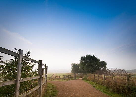 Upton Country Park in the Morning by Ralph Goldsmith