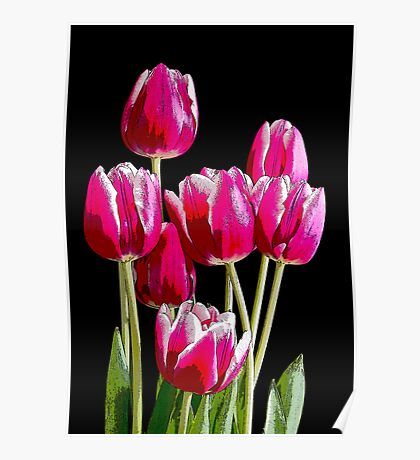 Bunch of pink tulips Poster