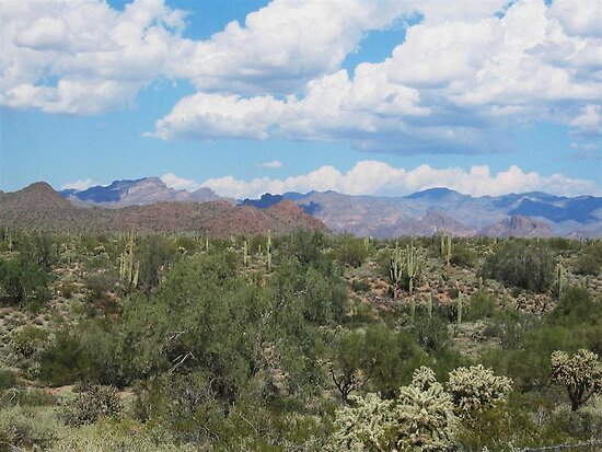 Arizona landscape  by gemeenie