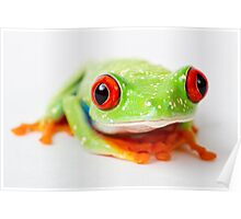 Mr Froggy Poster