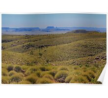 Spinifex and blue hills Poster