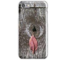 autumn 2 iPhone Case/Skin