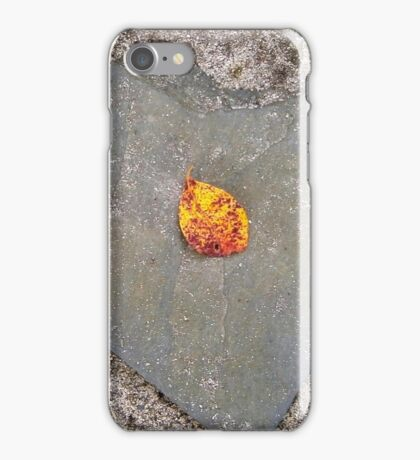 autumn 4 iPhone Case/Skin