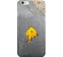 autumn 19 iPhone Case/Skin