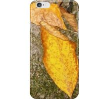 autumn 20 iPhone Case/Skin