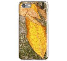 autumn 20 iPhone Case/Skin