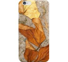 autumn 21 iPhone Case/Skin