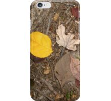 autumn 24 iPhone Case/Skin