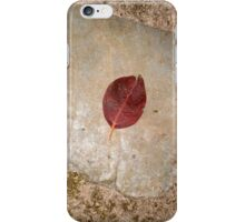 autumn 25 iPhone Case/Skin