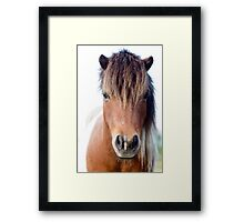 Horse with no name :)   Framed Print