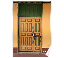 Green and Yellow Door Poster