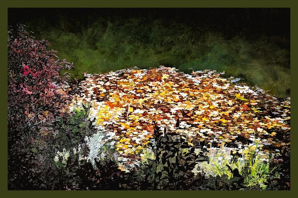 Pond Leaves by Wib Dawson