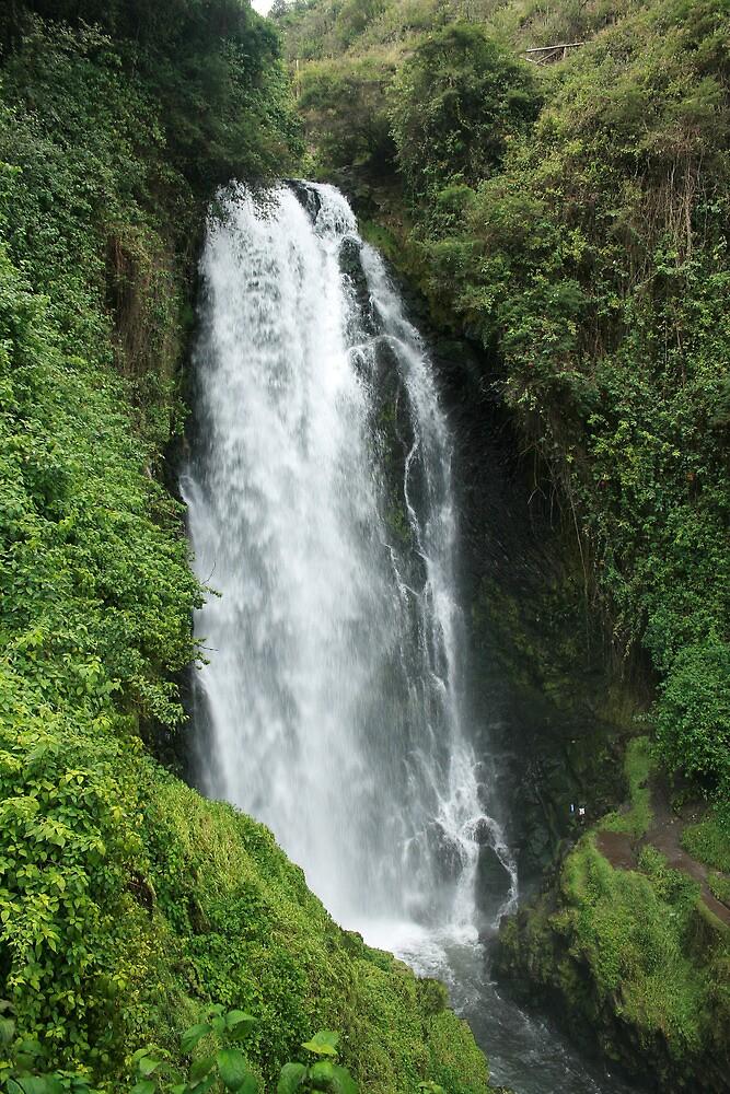 Peguche Waterfall and Green Plants by rhamm