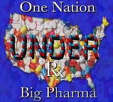 One Nation UNDER BIg Pharma(read my description if you dare). by Ann Morgan
