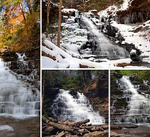 F L Ricketts Falls In Every Season by Gene Walls