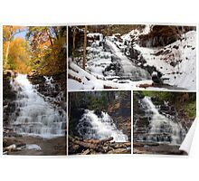 F L Ricketts Falls In Every Season Poster