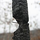 burn by Tim Horton