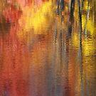 Autumn squared by Angela King-Jones