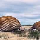 Glyptodon by Walter Colvin