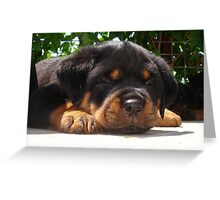 Cute Close Up Of A Sleepy Rottweiler Puppy Greeting Card