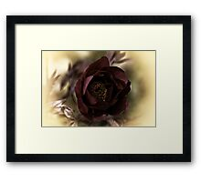 Velvet Dreams .... Framed Print