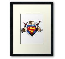 Superman revealed Framed Print