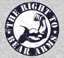 The Right Bear To Arms by protos