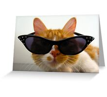 Cool Cat Wearing Sunglasses Greeting Card